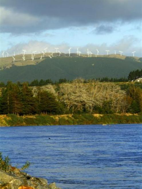 Windflow Technology turbines generate power at the Te Rere Hau wind farm near Palmerston North.