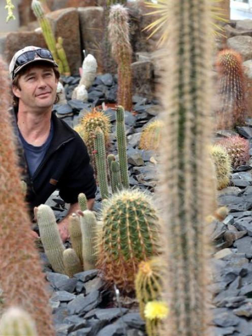 Winter Garden collection curator Stephen Bishop with  cacti on display in a glasshouse at the...