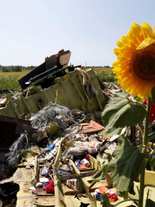 Wreckage and debris are seen at the crash site of Malaysia Airlines Flight MH17 near the village...