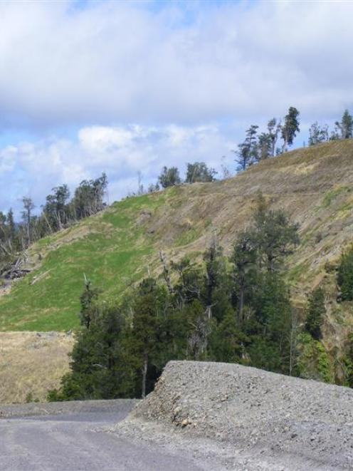 Year-old land rejuvenation slopes at Bathurst Resources' Cascade mine, on the Denniston plateau,...