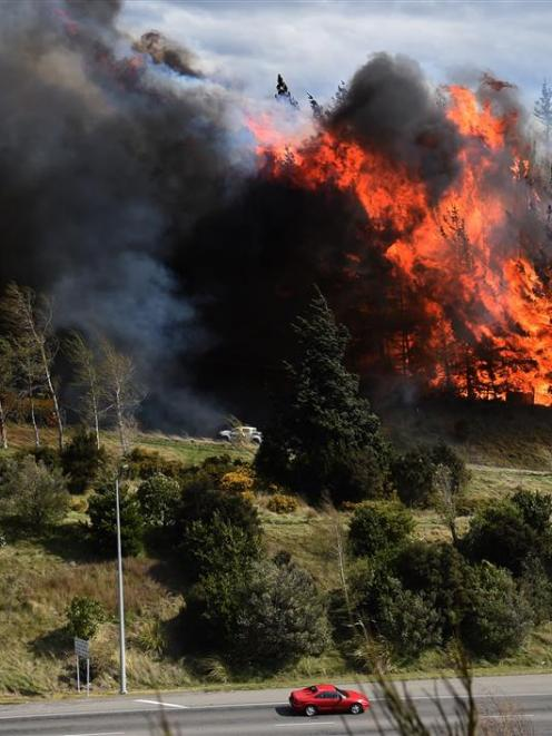 The Saddle Hill fire burning in Dunedin in October last year. Photo by Peter McIntosh.