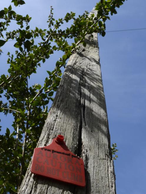 A red-tagged pole in Maori Hill that has ended attempts by a resident to hook up to fibre...