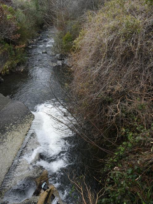 Sewage pipe repaired otago daily times online news a broken pipe spills sewage into the water of leith close to the malvern st bridge near patmos ave yesterday sciox Images