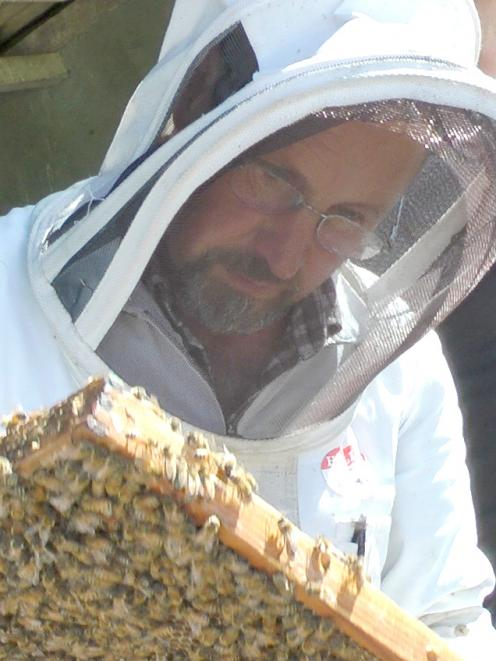 Southland Bee Society chairman Murray Christensen inspects a honeycomb. Photo: Supplied
