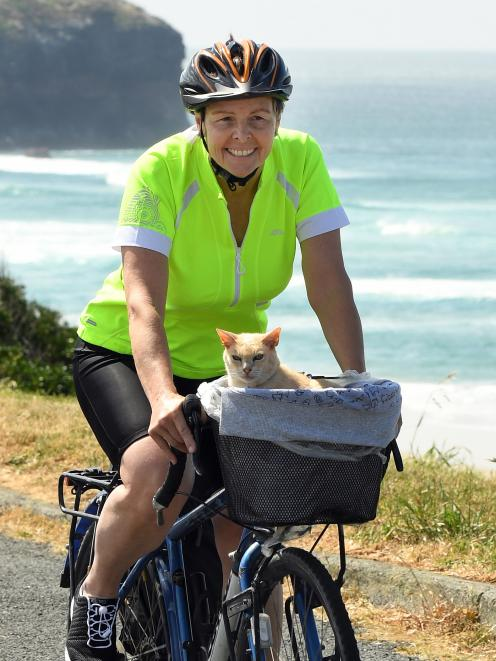 Jan Murch takes her Burmese cat, Mac,  for a ride on John Wilson Ocean Dr yesterday. Photo:...