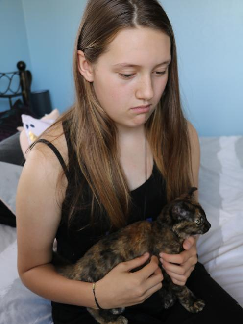 Allyssia Nicol  (12) is relieved her sister's kitten, Hazel, did not come to more harm after it...