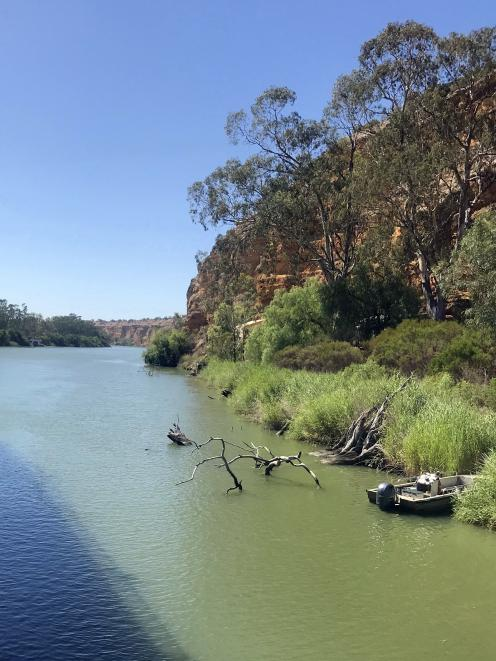 The Murray River looks like pale jade in late summer.