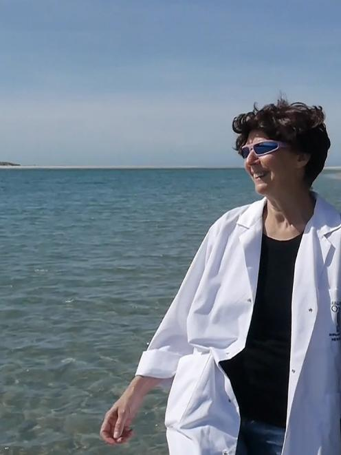 """Oku Moana"" joint co-ordinator Pam McKinlay in the role of a scientist for a performance that..."