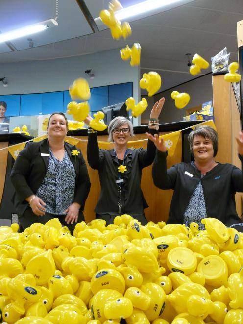 ANZ Balclutha staff members (from left) Crystal Steel, Natalie Paterson and Pauline Simonsen select their fundraising entries for the Daffodil Day Big River Duck Race on September 22. Photo: Richard Davison