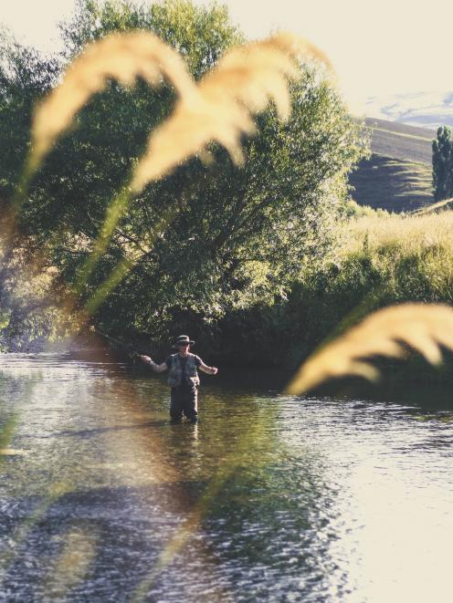An angler fishes the Pomahaka River earlier this month.