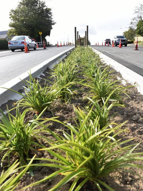 Kerbs are already in place, and trees, bollards and rocks are to follow at this Upper Stuart St median strip, viewed from Kaikorai Valley, to the west. Photo: Peter McIntosh
