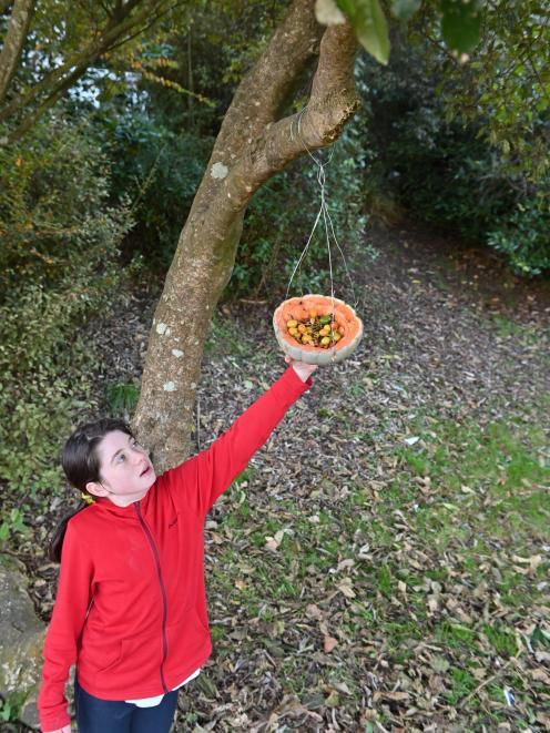 Pupil Dara Houlahan (10) with a pumpkin bird feeder at St Leonard's Primary School.