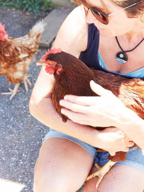Paws Awhile Animal Sanctuary owner Anna Dahlberg holds a chicken.