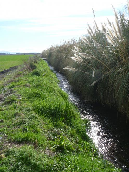 A Farm Environment Plan includes a review of waterways and biodiversity. Photo: Allied Press Files