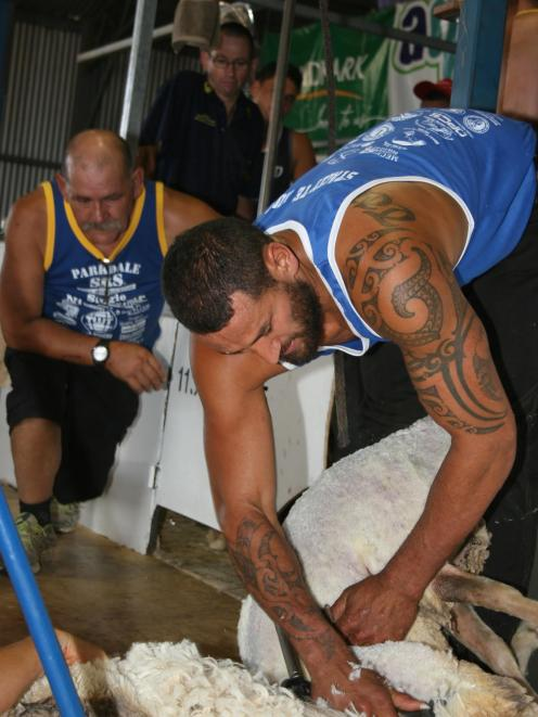 Stacey Te Huia, of Alexandra, will attempt to break the 9-hour merino wethers record at a farm...