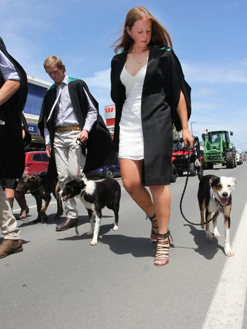 McKenzie Bird, of Kaiapoi, who gained a merit pass in a certificate in agriculture walks with her...