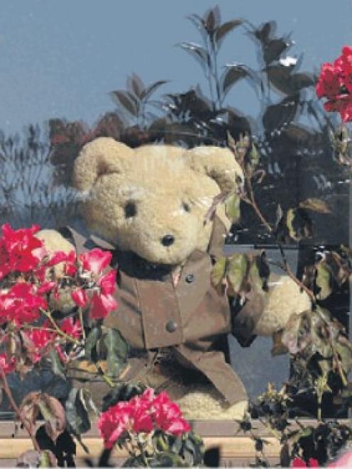 Teddy bears and other cuddly toys are popping up in windows across the South.