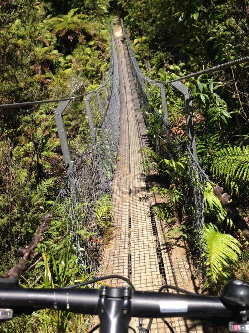 A swing bridge on the Mangapurua Track. PHOTO: ELEANOR HUGHES