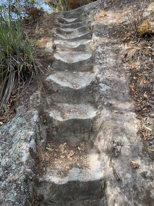 Worn stone steps on the track to  Whitianga Rock.