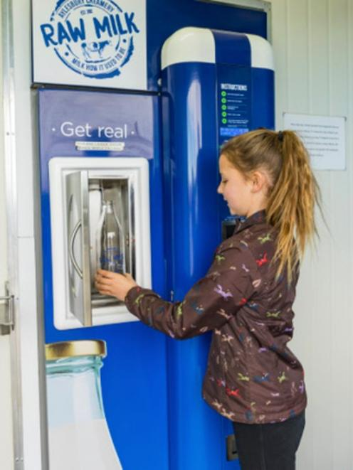 A vending machine at the farm dairy shed gives direct access to fresh raw milk, straight from the...