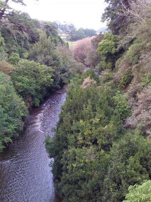 The Makakahi River viewed from Eketahuna's Cliff Walk.