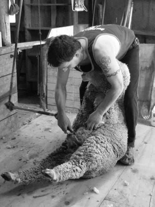 Grant Murdoch gave up shearing when he was 16 before giving it another shot three years later....