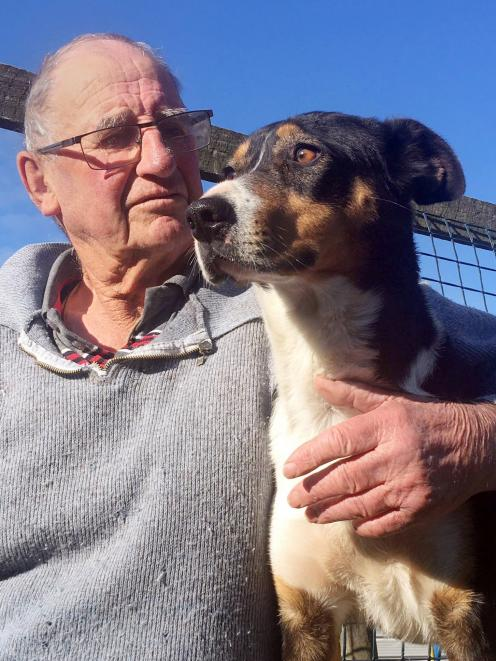 George Prouting is taking heading dog Rose to this week's Gore dog sale. PHOTO: SALLY RAE
