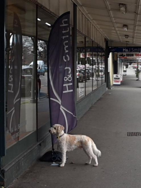 The down-sizing of Gore's H&J Smith department store has been a blow to the community.
