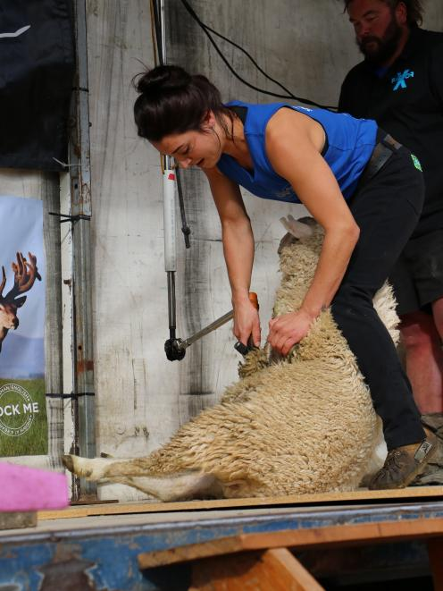 Tokanui shearer Megan Whitehead takes the belly wool off her lamb during the Riversdale Speed...