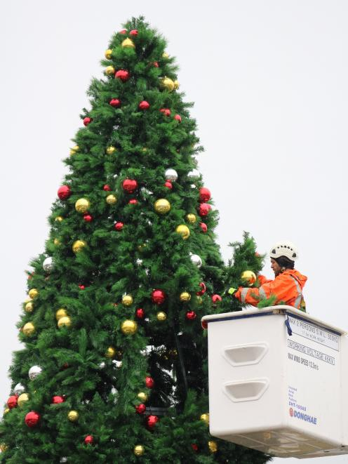 Contractors work to bring Oamaru's Christmas tree to life, in front of the Waitaki District...