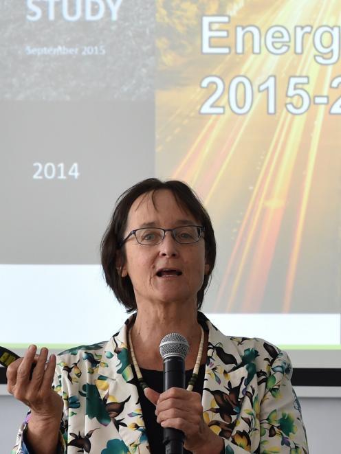 Associate Prof Janet Stephenson speaks in Dunedin yesterday. PHOTO: GREGOR RICHARDSON