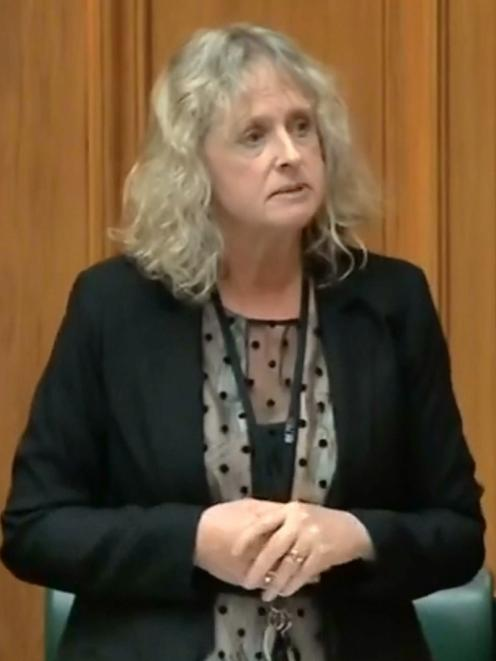 Invercargill list MP Liz Craig speaks in support  of drug checking legislation.PHOTOS: SUPPLIED