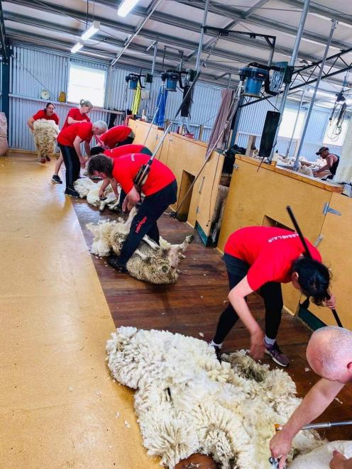 Organisers of the Bales4Blair campaign are urging shearers, farmers and wool brokers to donate...