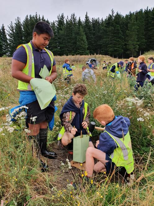 Mayfield School pupils and staff plant natives at the Rushton farm as part of a initiative with...