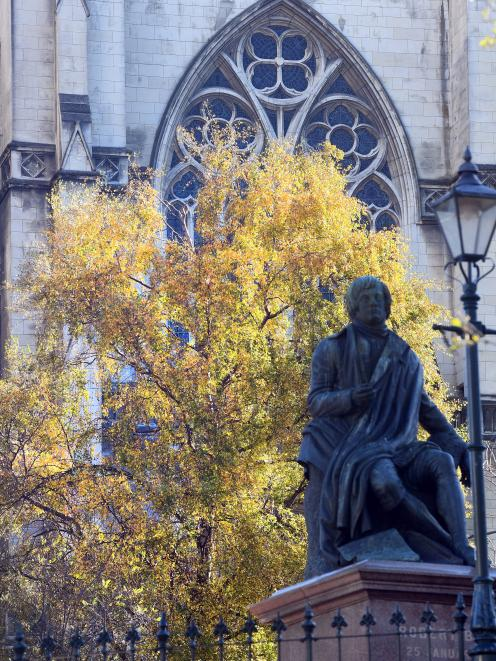 The golden leaves of a silver birch tree outside St Paul's Cathedral in central Dunedin are...