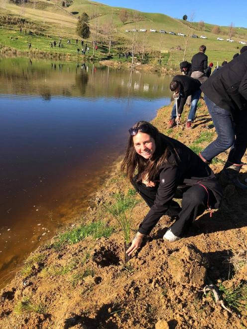 Izabella Hurst puts a plant in the ground at sheep and beef farm Spring Valley Enterprises, in...