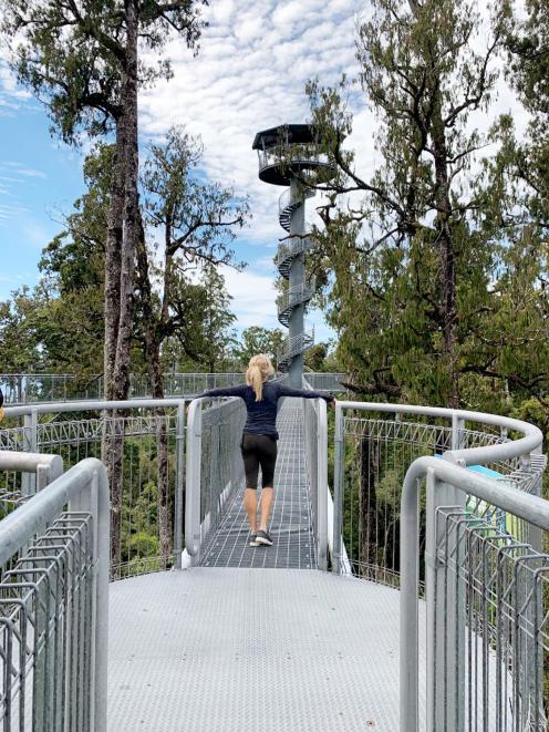 The West Coast treetop walkway.