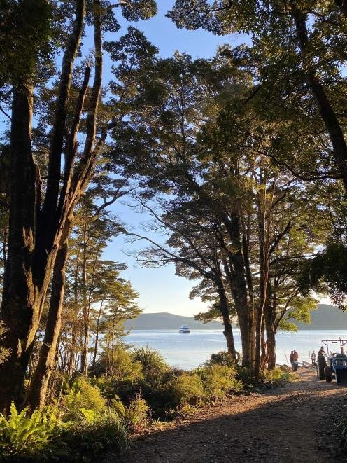 Kisbee Bay in southern Fiordland was once home to the coalmining town of Cromarty; now it is one...
