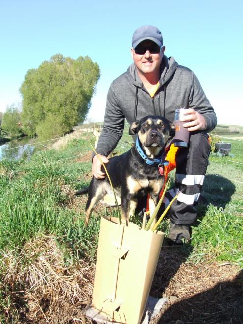 Adam Blignaut, with dog Tessa, plants native plants as part of a 1.5km stretch of planting at Kia...