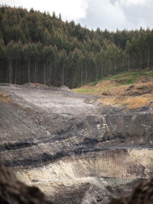 Takitimu Mine operates just outside of Nightcaps. Its parent company Bathurst Resources Ltd is...