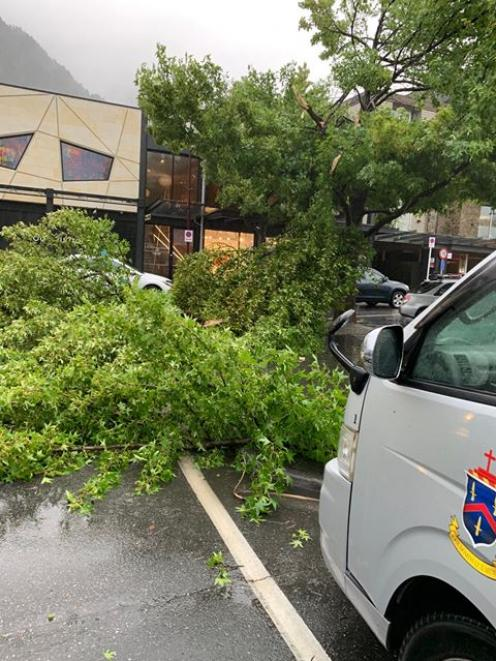 A tree down in central Queenstown next to the Louis Vuitton store. Photo: Tu Bull