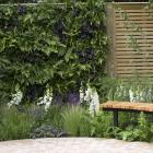 A small courtyard living wall panel grown using a hydroponic system. Photo: IMAGES USED WITH...