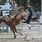 Cowboy Nathan Keown, of Gore, flies off his bronc during the Maniototo Rodeo open bareback division yesterday. Photos by Gregor Richardson.