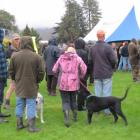 A sea of camouflage fills Alexandra's Pioneer Park as shooters wait to be allocated blocks of...