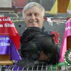 Dunedin Poultry, Pigeon and Cage Bird Club president Stuart Aitken holds up his partner's prize-winning bird at the Dunedin Poultry Show yesterday. Photos: Gerard O'Brien.