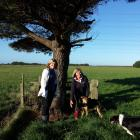 Wools of New Zealand director Lucy Griffiths spends some time on the farm in Invercargill with ...