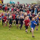 Year 5 girls start at the Otago Primary schools cross country. Photos: ODT.