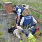Police rush to assist a man who was dragged from a smoking car wreck following a crash on Main...