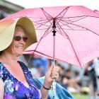 Raewyn Miller, of Dunedin, takes shelter from the light rain.
