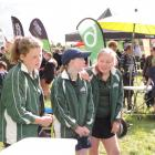 Completing a challenge on trees are Hinds School pupils (from left) Isla Syme, Sophie Wilson and Jacinda Irvine. Photos: Supplied